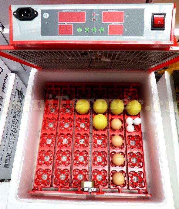 китайские лотки для инкубаторов