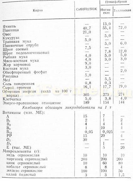 Условия содержания цесарок клеточное содержание