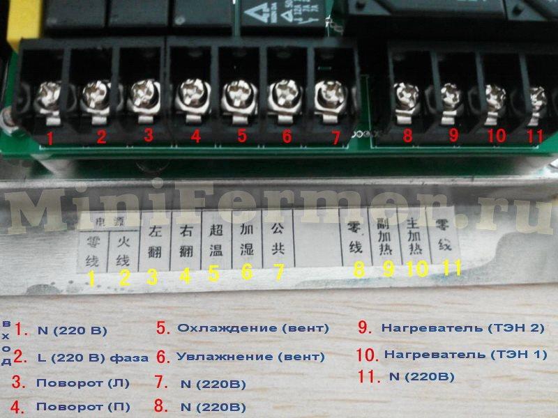 Схема подключения контроллера для инкубатора XM18-3