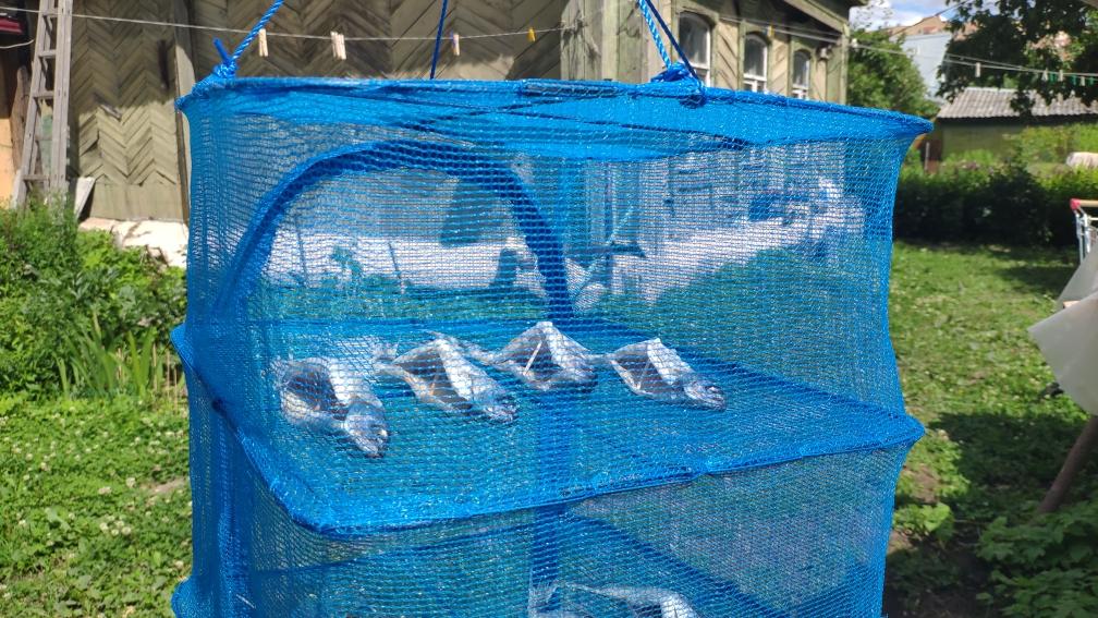 сушилка для рыбы и воблы