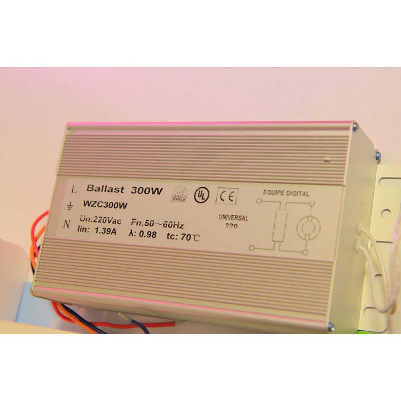 Индукционная лампа для растений 300W (RED+BLUE)