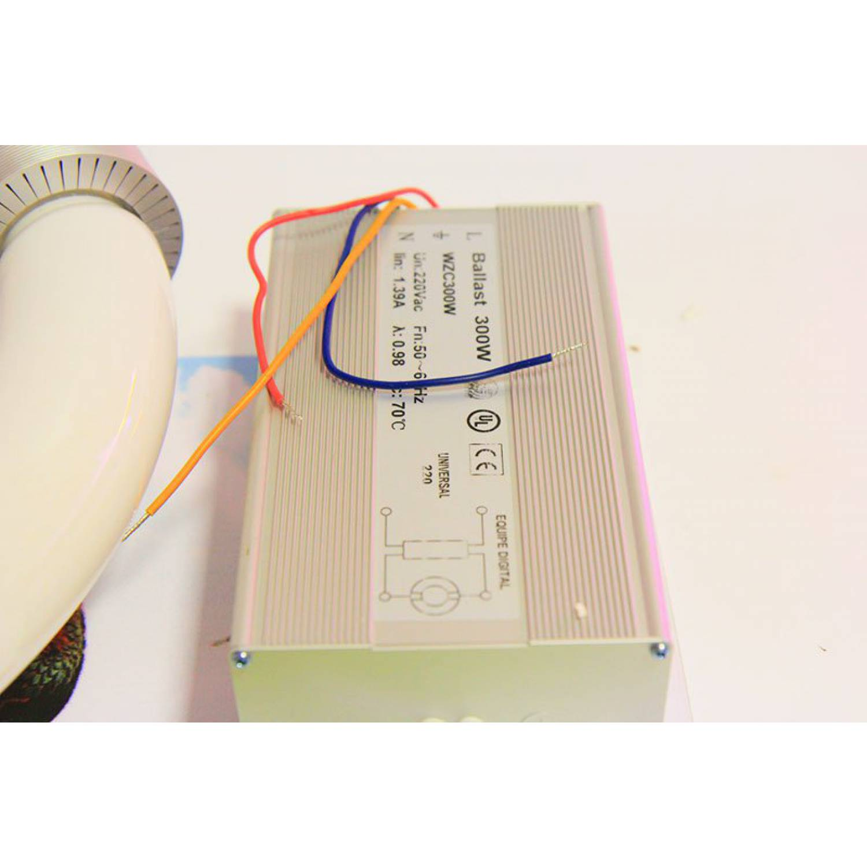 Индукционная лампа для растений R-300W (RED)