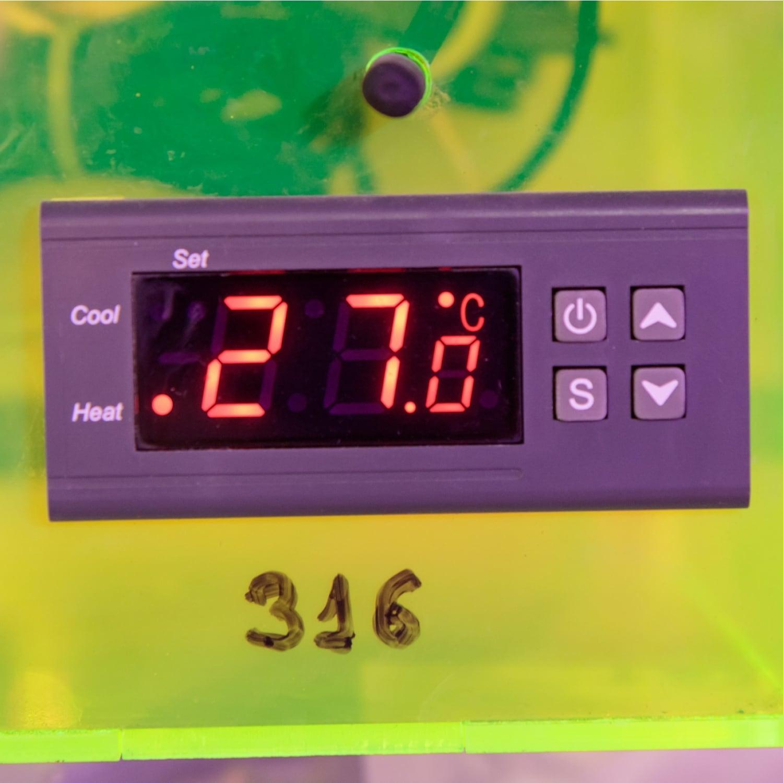 Терморегулятор Ringder RC-316M 16А
