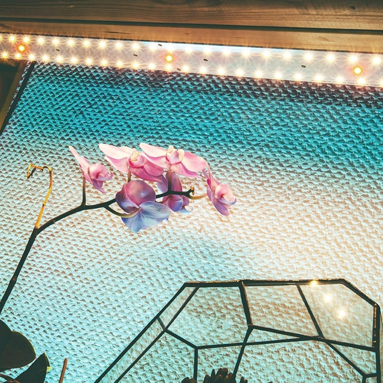 2.2.c Quantum line 600 мм  Биколор Epileds48mil 660 nm + 450 nm  (3:1)
