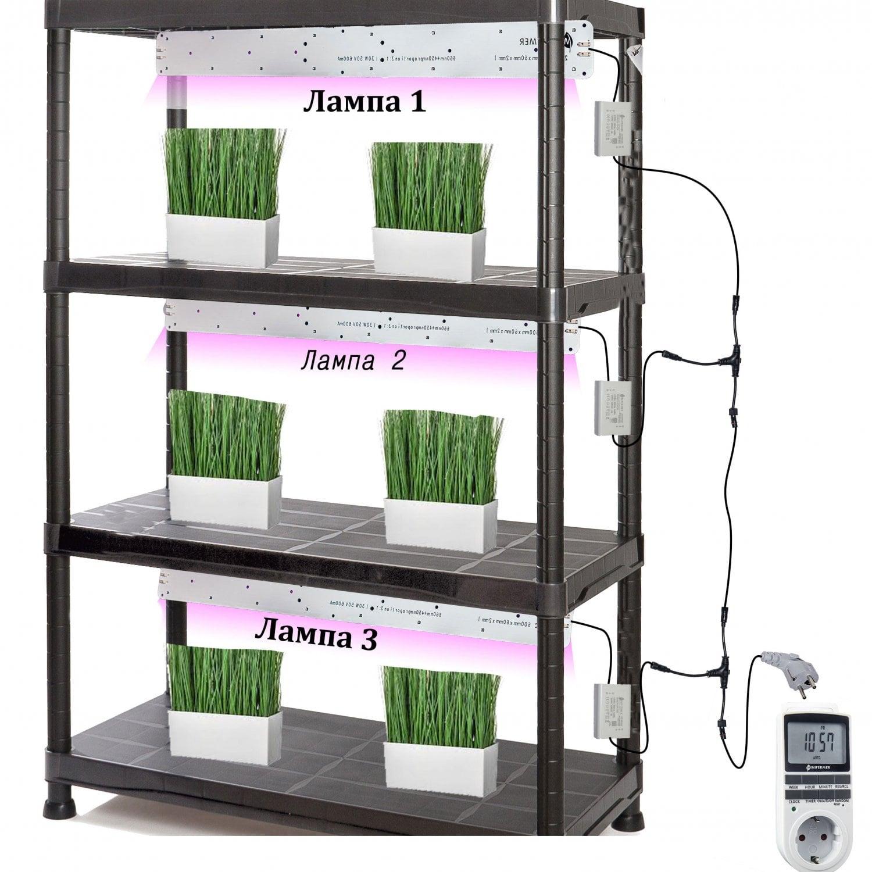 Готовый стеллаж для выращивания растений 141*60*30