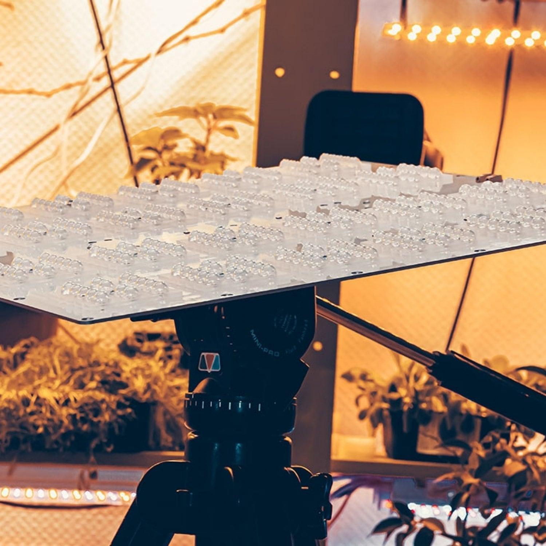 Готовый Quantum board 281b 39*39 120 Ватт с диммируемым драйвером