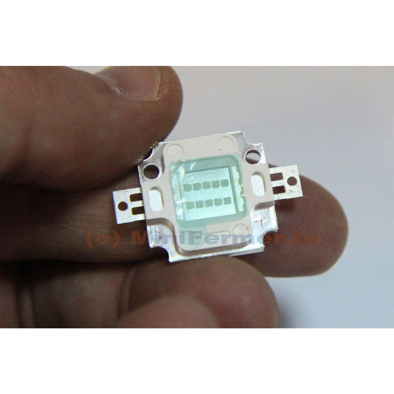 Светодиодная фито матрица 10W для растений (440нм - синий)