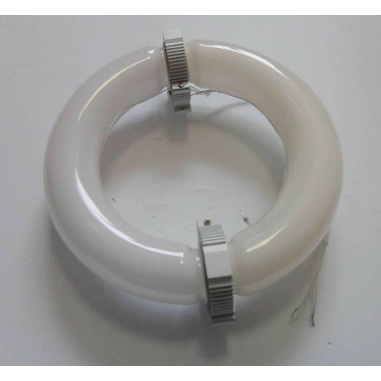 Индукционный светильник для растений 250W. Bicolor (440нм+660нм)