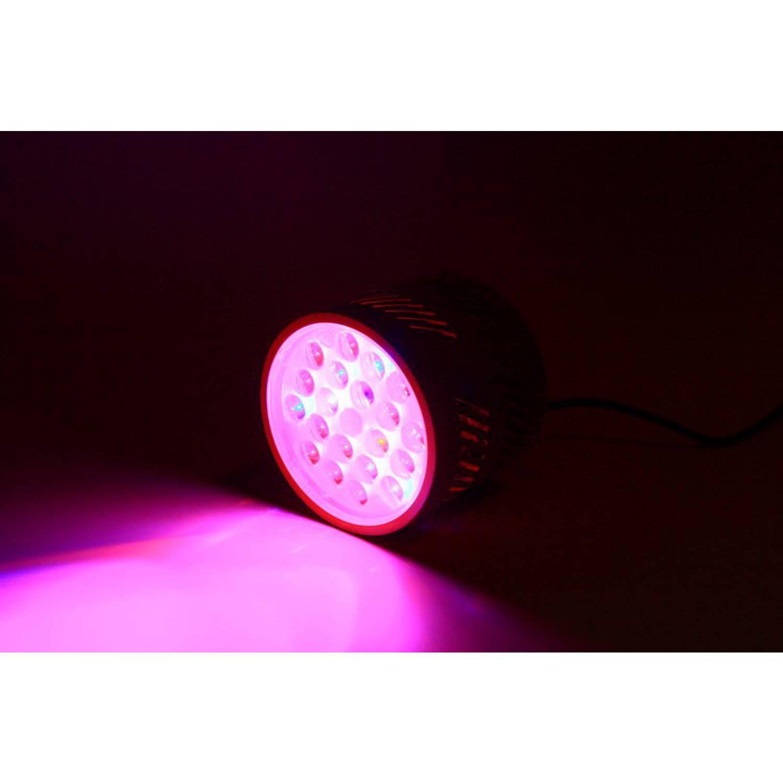 Фитолампа Apollo1 LED 63W