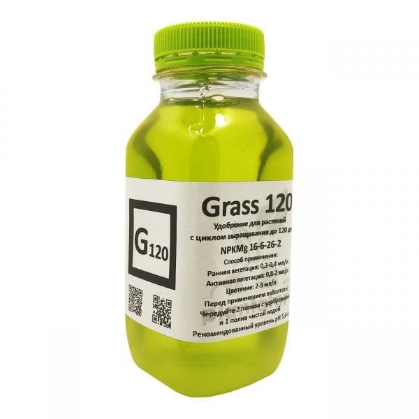 Grass 120