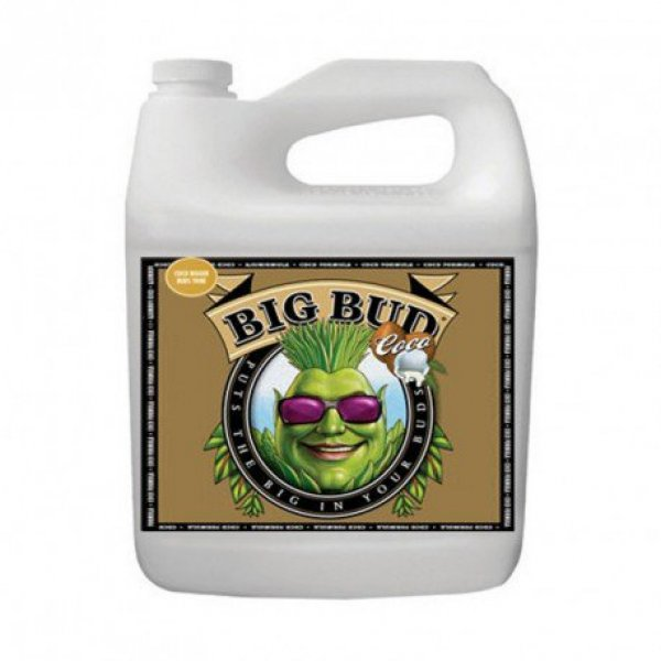 Big Bud Coco Liquid 0.25L