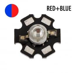 Светодиод красный с синим (два кристалла) 5 Вт