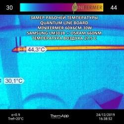 Биколор 2.4.e 660nm+450nm (3:1) Quantum line 1200 мм