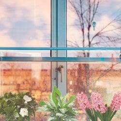 Штанга телескопическая распорная для крепления фитоламп на окно 110-200см