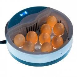 Инкубатор для яиц автоматический И_9_1